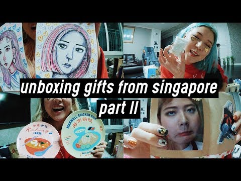 Unboxing Huge Gifts from Singapore Meet & Greet - Part II   DTV #54