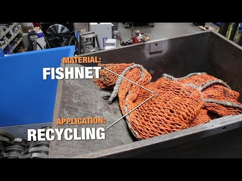 SSI's Shred of the Week: Fishnet