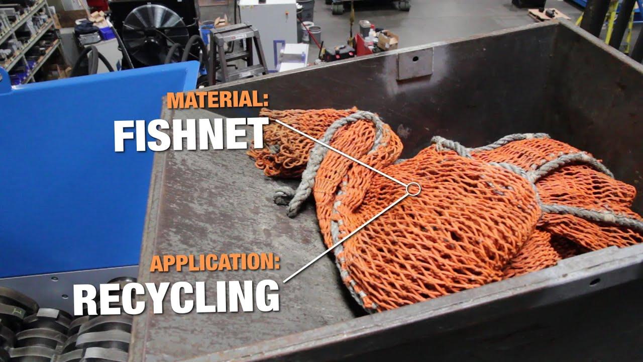 [04.15.15] Fishnet