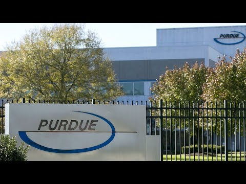 US lawmakers pursue Purdue Pharma for fueling opioid epidemic Mp3