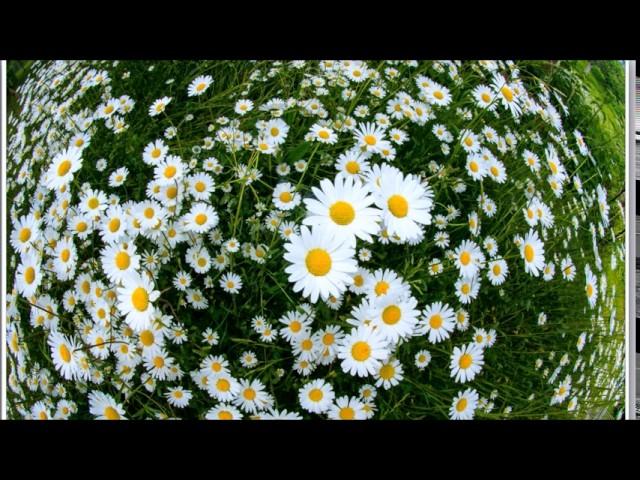 Изображение предпросмотра прочтения – КириллПересторонин читает произведение «Весна(Любовь земли ипрелесть года…)» Ф.И.Тютчева
