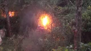 Leopard Attack Hatton Sri lanka | දිවියකු හැටන් වතුයායේදි  කල හදිය..😟