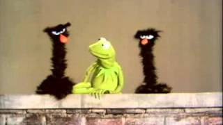 Classic Sesame Street   Kermit Explains Short and Tall