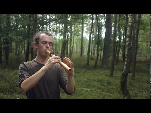 Forest flute, A# 432hz