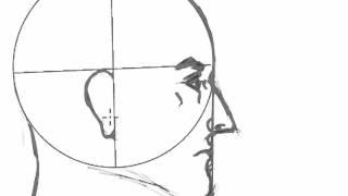 Proporciones de rostro hombre de perfil.mp4