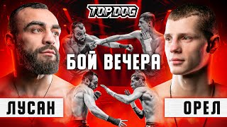 Orel vs. Lusan | Fight of the night | TDFC7