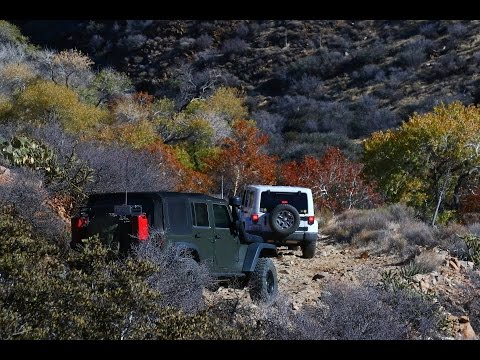 Anza Borrego Desert State Park, November-December 2015, Part 2