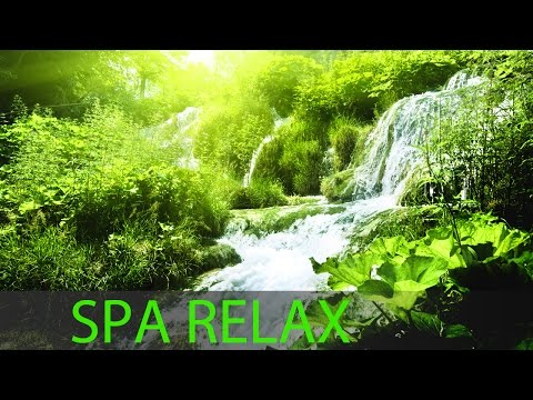 8 HOURS Relaxing Spa Massage Music: Soothing Music, Calming Music, Meditation Music ☯272
