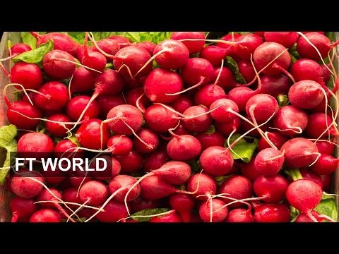 US agriculture: radishes to the rescue