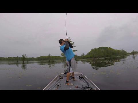 Santee Cooper - Lake Marion Bass Fishing
