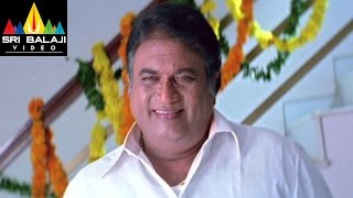 Jayaprakash Reddy Comedy Scenes Back to Back | Volume 2 | Sri Balaji Video
