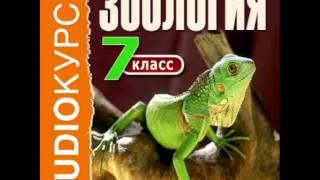 2000251 Urok 38 Аудиокнига.