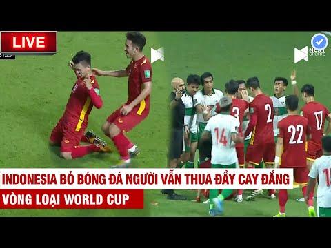 Tuyền Văn Hoá cà khịa Indo siêu chất: Việt Nam vùi dập Indonesia 4 bàn không ngẩng mặt lên nổi!