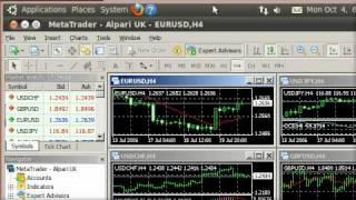 MT4 & MT5 on Linux 05: Installing Metatrader 4