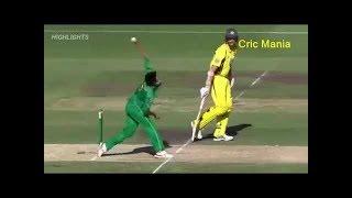 Pakistan vs Australia final T20 Highlights || final T20 ||08, july 2018 fall of Wickets