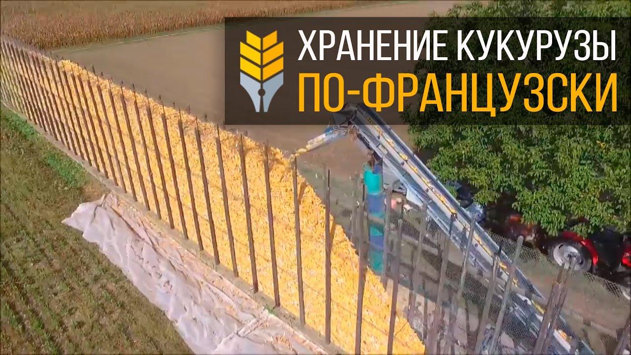 Хранение кукурузы в элеваторе село шира элеватор