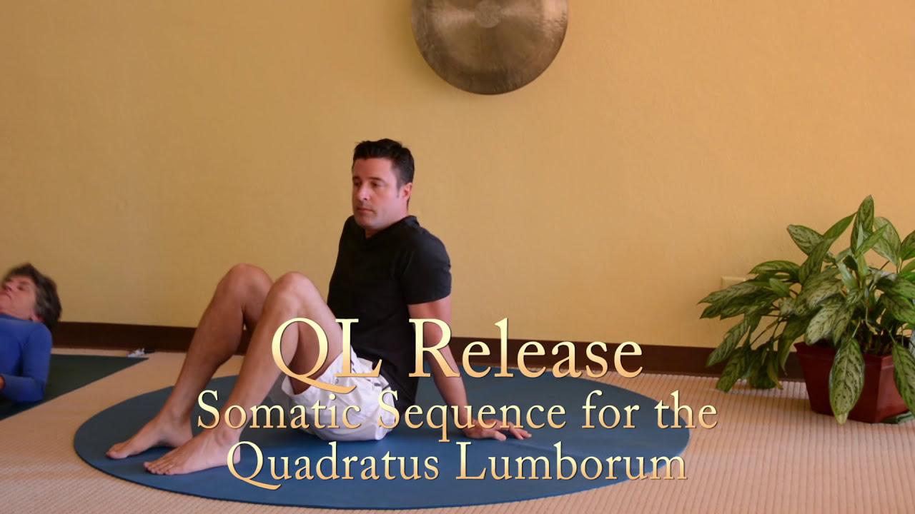 quadratus lumborum muscle strain wwwimgkidcom the