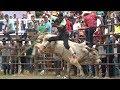 Video de Pinotepa de Don Luis