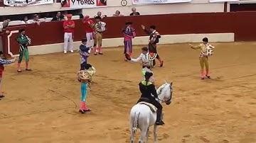 Corrida Paseo Vic Fezensac 2015 taureau José Escolar Gil