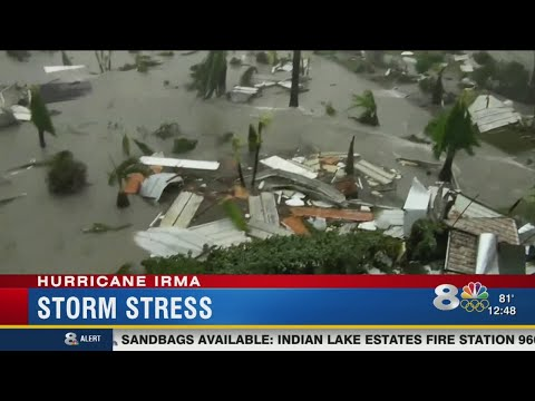 Tampa Bay area mental health counselor talks anxiety over Hurricane Irma