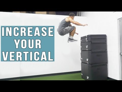 INCREASE YOUR VERTICAL | Exclusive Jump Program Workout