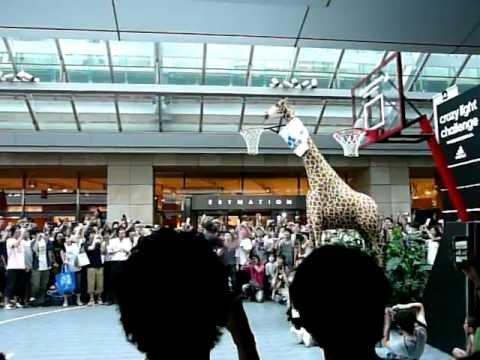 "Dwight Howard ""Giraffe Dunk""@Roppongi HIlls,Japan"