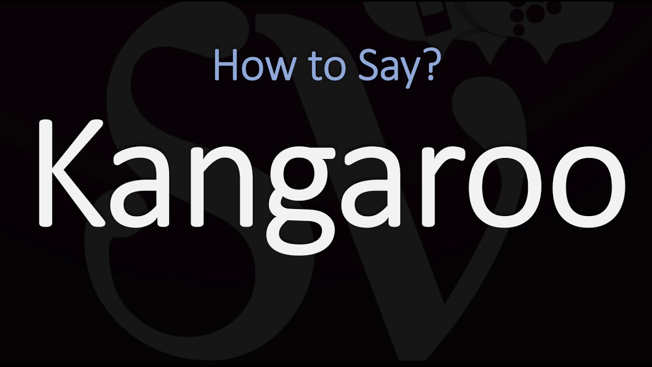 How to Pronounce Kangaroo? (CORRECTLY) Meaning & Pronunciation