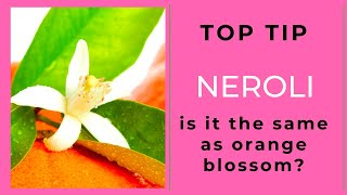 Neroli or Orange Blossom. Are they the same thing?
