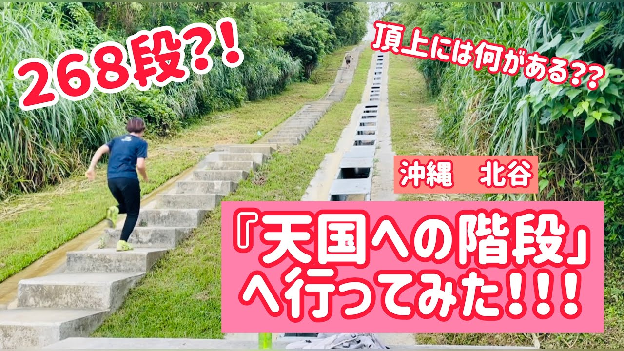 『天国への階段』って、ご存知ですか?✨