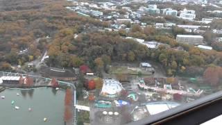 東山スカイタワーから見た紅葉 パナソニックHC-V360M iA90倍ズーム
