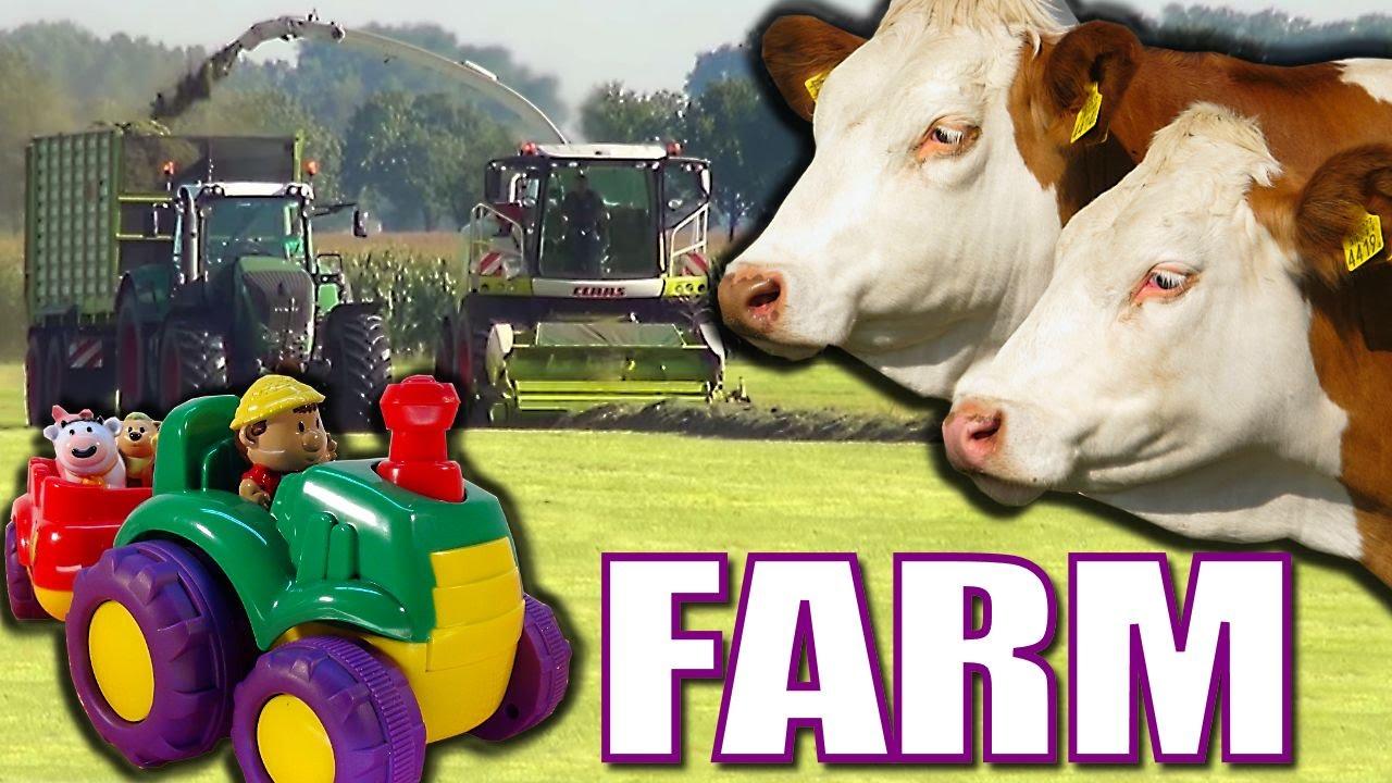 Joe MacDonald Kids Animals On Farms Video With Farm Horses Cows A Of