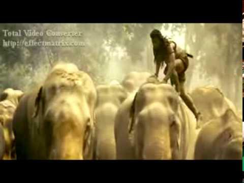 Tony Jaa VS Elephants. Amazing tony jaa. www.vir-zone.com streaming vf