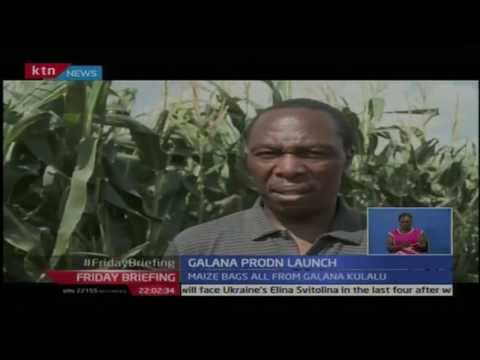 Ministry of water handed bags of maize harvested in Galana-Kulalu food security project