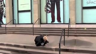 Justin Bieber se cae andando en #skate en #Madison #Square Garden #NewYork