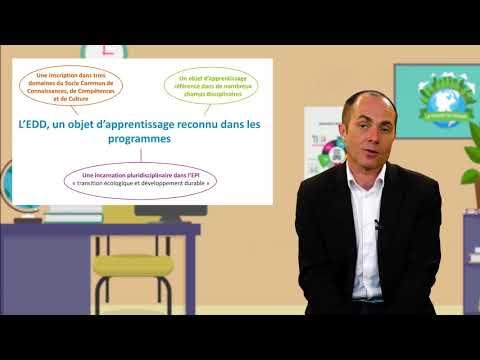 Éducation au développement durable : ce que disent les programmes scolaires en France