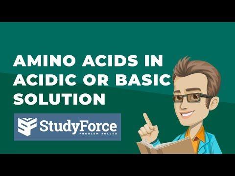 Amino Acids In Acidic Or Basic Solution