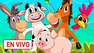 Canciones infantiles EN VIVO    Toy cantando   musica infantil   #6