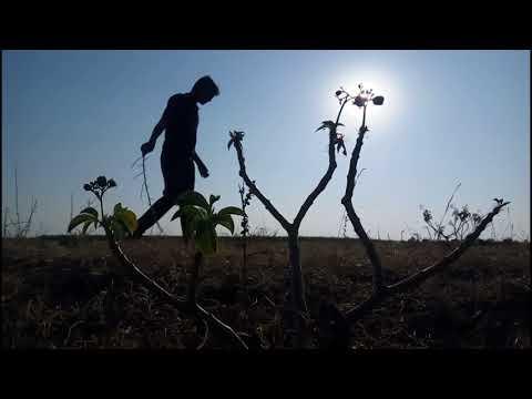 Geethanjali   Aamani padave song