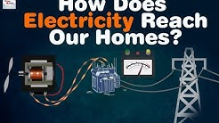 How Does Electricity Reach Our Homes? | Animated Fun Facts of Science for Kids | Electricity