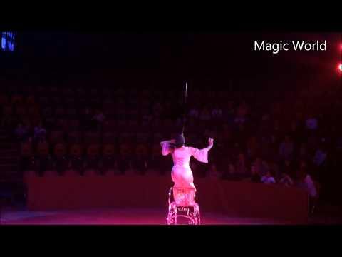 Circus Fail Circus Tricks Gone Wrong on Magic World