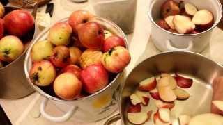 Настоящая домашняя пастила из яблок