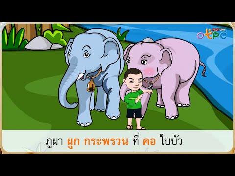 ตามหา - สื่อการเรียนการสอน ภาษาไทย ป.1