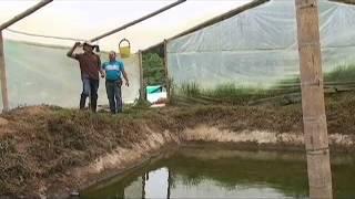 Una granja ejemplo de autosostenibilidad