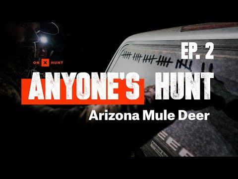 Anyone's Hunt: Arizona Mule Deer, EP. 2 | Presented by onX Hunt
