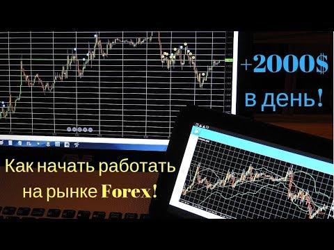 Как начать работать на рынке Forex! Преимущества работы!