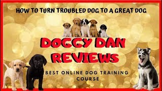 Doggy Dan Online Dog Training Review _  Best Dog Obedience Training Classes Online