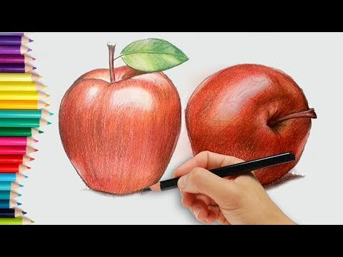 How to draw an Apple - how to draw an apple in pencil | step by step how to use pencil strokes