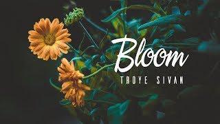 youth troye sivan mp3 lyrics