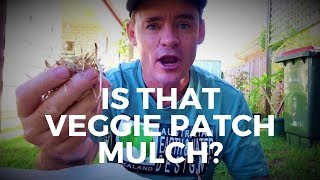 Veggie Garden Sugar Cane Mulch Sandy Soil and Rock Dust Vlog