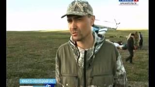 В Ямало-Ненецком округе от сибирской язвы погибли полторы тысячи оленей